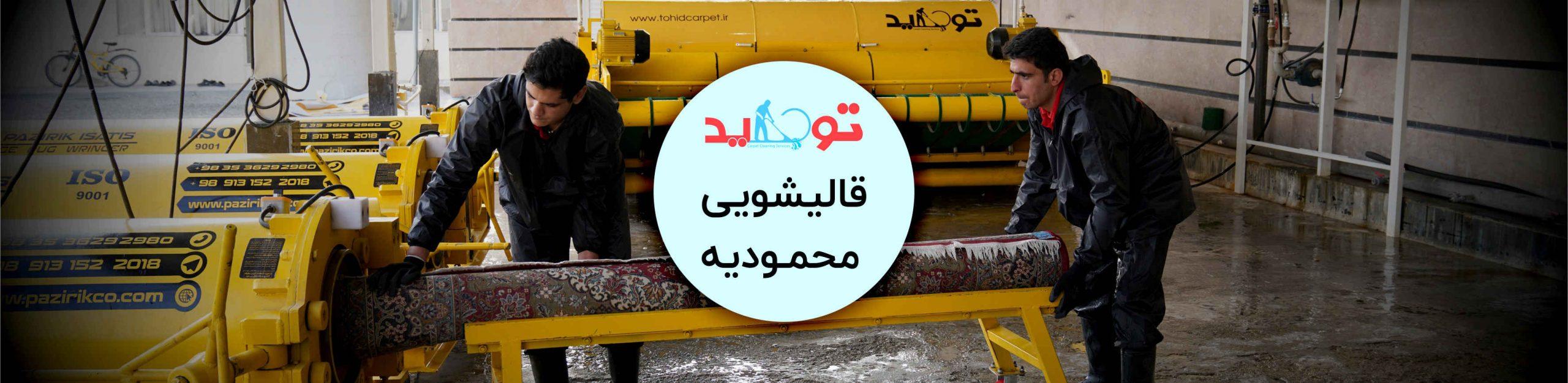 قالیشویی محمودیه
