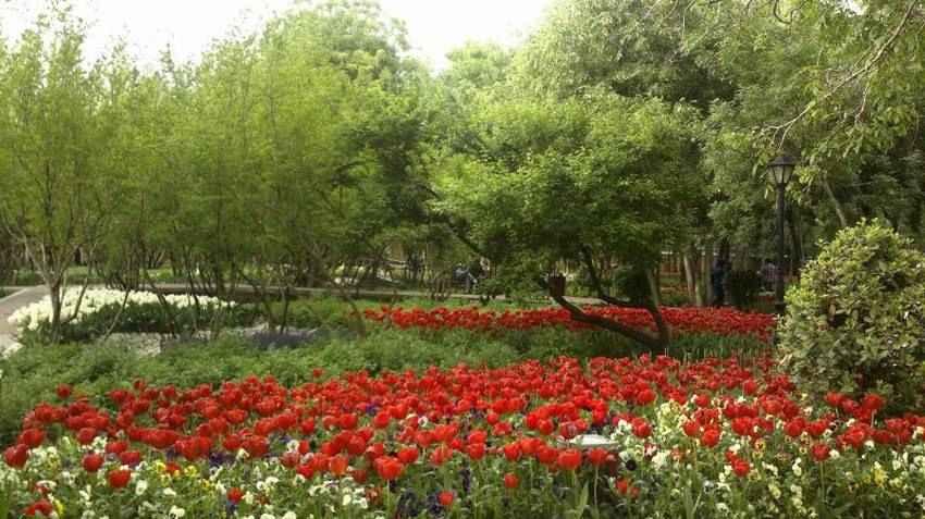باغ ایرانی در منطقه ده ونک